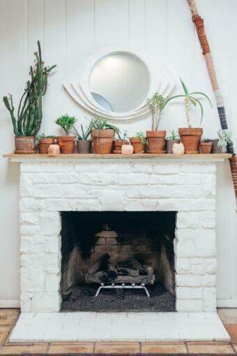 rośliny doniczkowe nakominku wdrewnianym domu